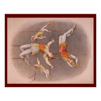 TOP Acrobat in the House Poster