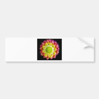 Top Down Flower Bumper Sticker