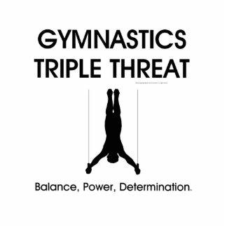 TOP Gymnastics Triple Threat (Men's) Standing Photo Sculpture
