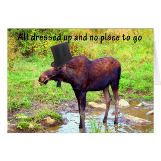 Top Hat Moose Card