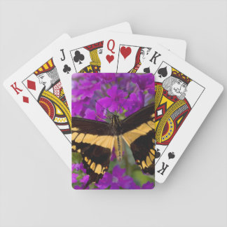 Top of a swallowtail butterfly poker deck
