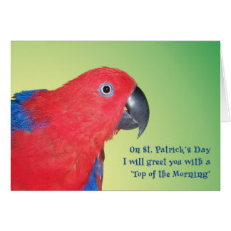 Top of the Morning Card