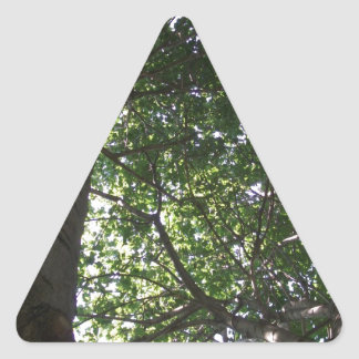 Top of the Tree Triangle Stickers