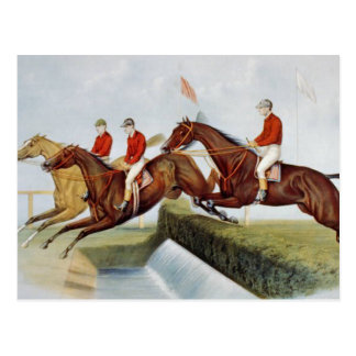TOP Steeplechase Postcard