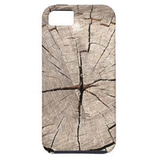 Top view of a brown cut tree iPhone 5 cases
