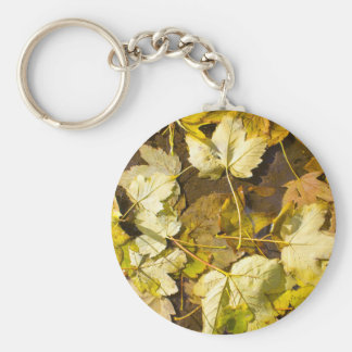 Top view of a wet autumn leaves keychain