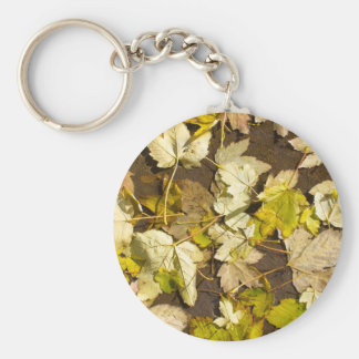 Top view of a wet autumn maple leaves keychain