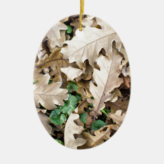 Top view of the fallen oak leaves ceramic oval ornament