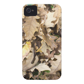 Top view of the fallen oak leaves closeup iPhone 4 Case-Mate case