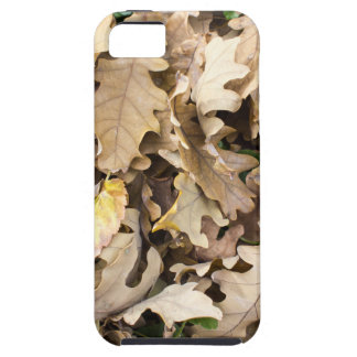 Top view of the fallen oak leaves closeup iPhone 5 covers