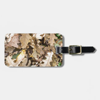 Top view of the fallen oak leaves closeup luggage tag