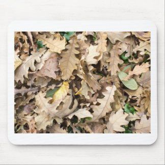 Top view of the fallen oak leaves closeup mouse pad