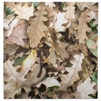 Top view of the fallen oak leaves closeup napkin