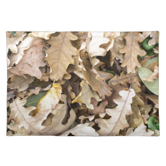 Top view of the fallen oak leaves closeup placemat