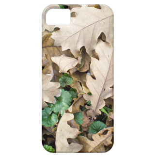 Top view of the fallen oak leaves iPhone 5 cover