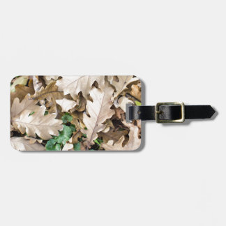 Top view of the fallen oak leaves luggage tag