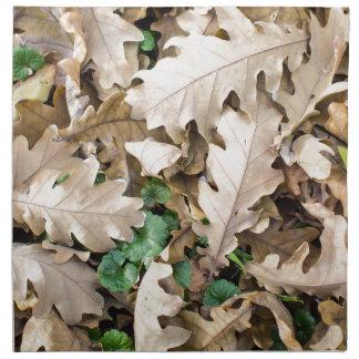Top view of the fallen oak leaves napkin