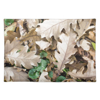 Top view of the fallen oak leaves placemat