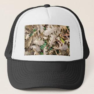 Top view of the fallen oak leaves trucker hat