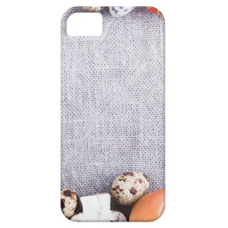 Top view of the food ingredients in the form iPhone 5 case
