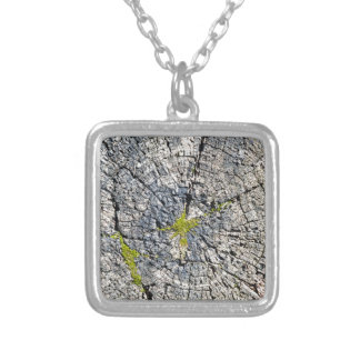 Top view of the texture of an old wooden stump silver plated necklace