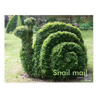 Topiary garden snail mail cute fun green postcard
