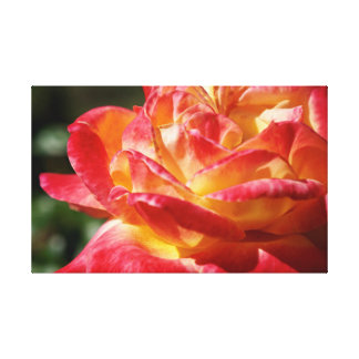 Topical Flower Canvas Print
