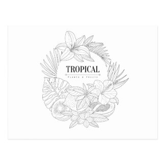 Topical Fruits And Plants Logo Postcard