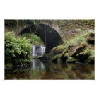 Torc Waterfall Bridge Poster