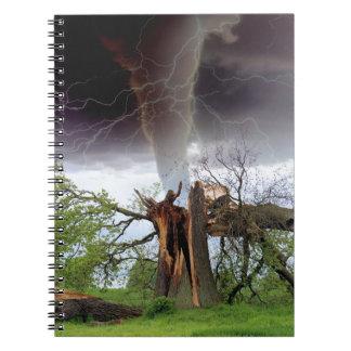 Tornado Notebooks
