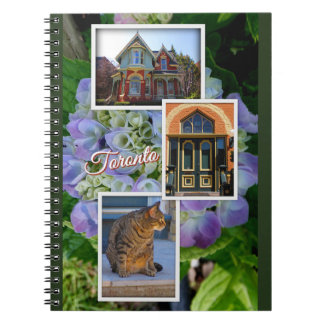 Toronto Ontario Images – Victorian Architecture Notebook