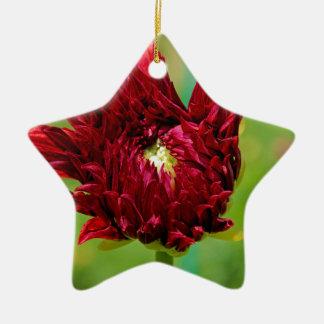 Torpedoing Bliss Ceramic Star Ornament