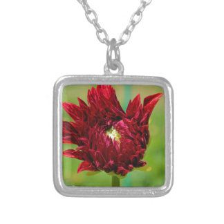 Torpedoing Bliss Silver Plated Necklace