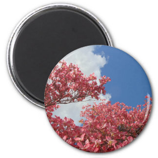 Torrent of Blossoms Magnet