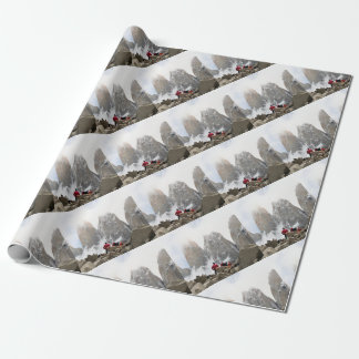 Torres del Paine National Park, Chile Wrapping Paper