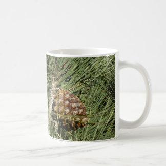 Torrey Pine Closeup California Tree Coffee Mug
