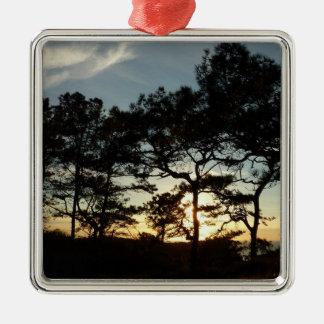 Torrey Pine Sunset II California Landscape Metal Ornament