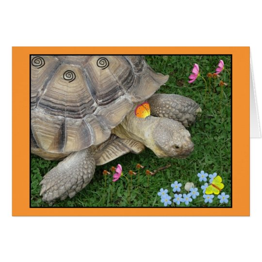 tortoise and flowers card