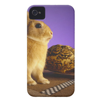 Tortoise and the hare iPhone 4 Case-Mate cases