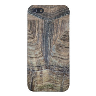 Tortoise Shell iPhone 5 Cover