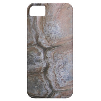 Tortoise Shell iPhone 5 Covers