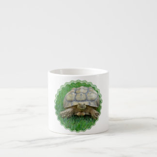 Tortoise Specialty Mug