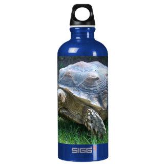 Tortoise Water Bottle