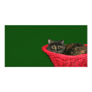 Tortoiseshell Christmas Picture Card