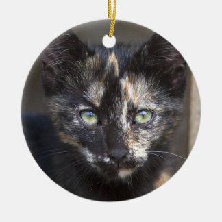 Tortoiseshell Kitten Ceramic Ornament