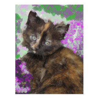 Tortoisshell Kitten in Gree and Purple Flowers Postcard
