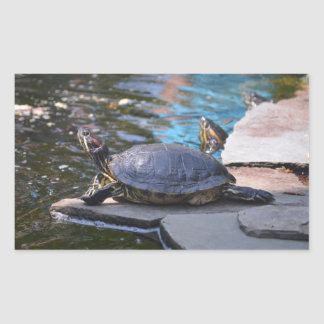 tortue exposant au soleil le himelf autocollant en rectangle