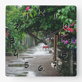 Tortuguero Costa Rica after Rain Backward Clock
