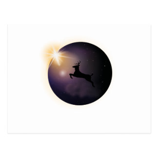 Total Solar Eclipse August 2017  Deer Postcard