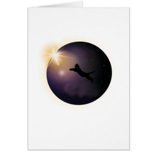 Total Solar Eclipse August 2017 Funny Cat Card